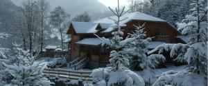 iarna_small