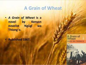 a grain