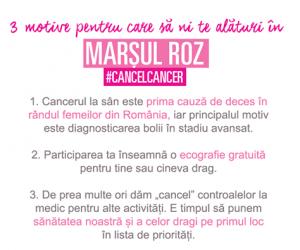 marsul roz1