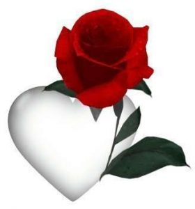 o-inima-si-un-trandafir_e35d45855e81ae